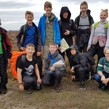 Bronze Dofe New Forest October 2018 1024X732