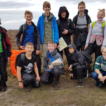 Bronze Dofe New Forest October 2018